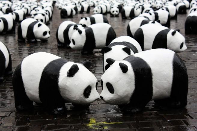 1600 pandas Nantes 2009-3.jpg by Stéfan. cc-by-sa-2.0. https://commons.wikimedia.org/wiki/File:1600_pandas_Nantes_2009-3.jpg?uselang=pt